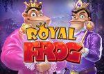 Royal Frog